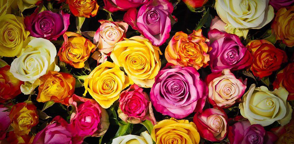 Spraw prezent kobiecie i wyślij jej kwiaty